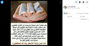 مصدر ادعاء نسخة مترجمة من القرآن الكريم في سفينة التايتنك فتبينوا