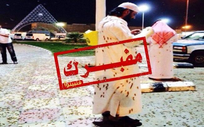 Locust plague in Saudi Arabia (Riyadh) – May 15 2014. Photo: Alerta Roja Noticias