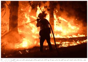 رجل يقوم بإخماد حريق الغابات