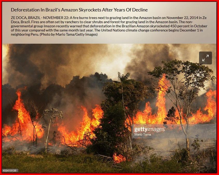 صورة لحرائق الغابات تعود للأمازون 2014