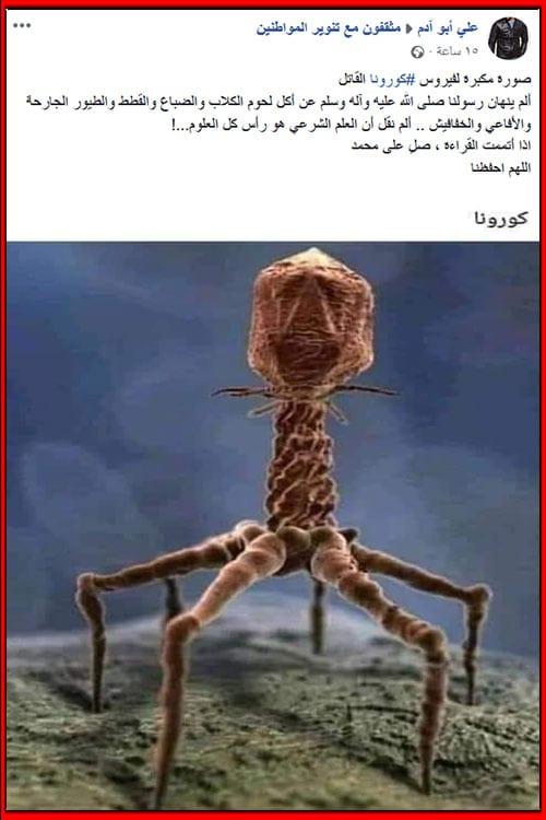 خرافة تدعي أن هذا هو فيروس كورونا