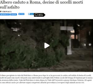 الرياح القوية في روما