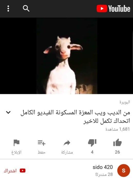 ادعاء الماعز المسكون المنتشر على يوتيوب