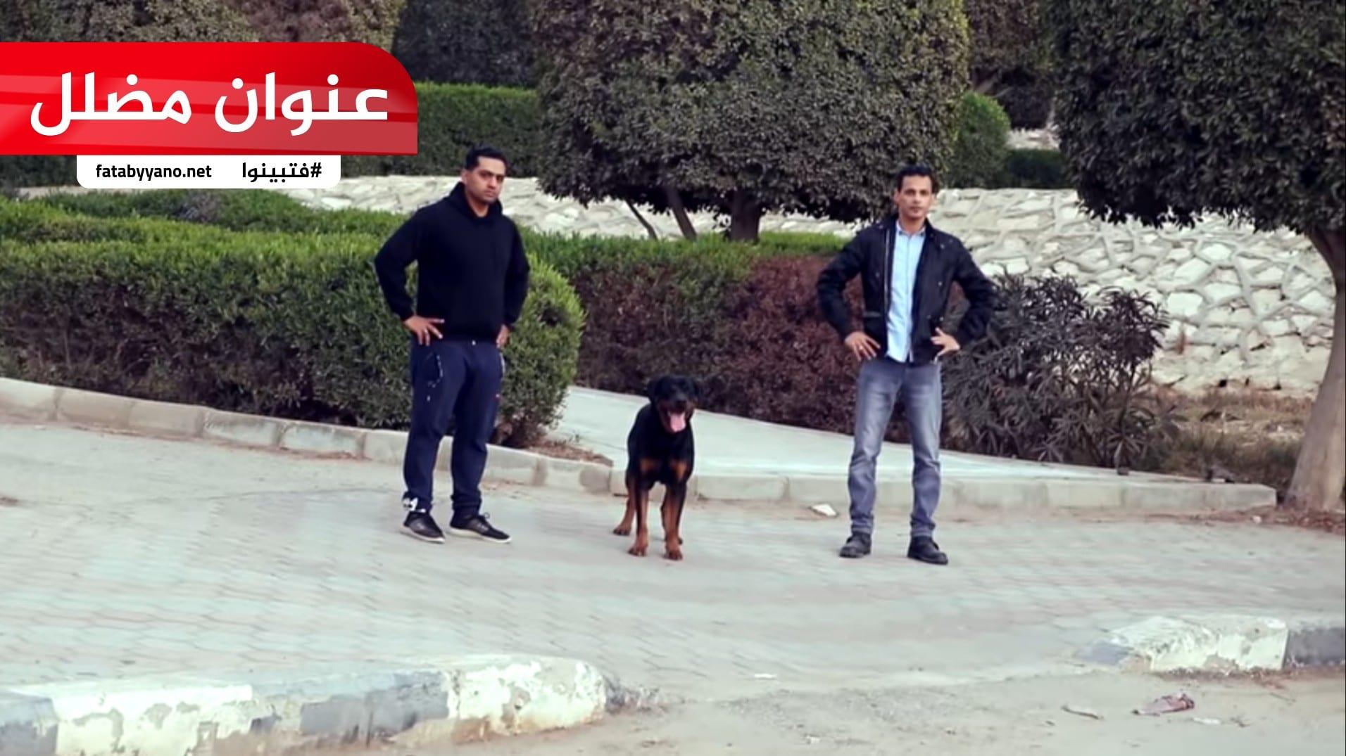 إسرائيلي يطلق كلبه على فلسطيني يصلي مع ابنه في الشارع