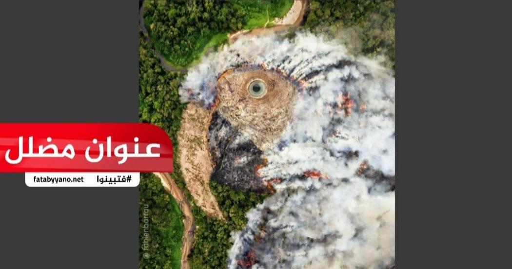 حريق في غابة الأمازون بالبرازيل على شكل ببغاء
