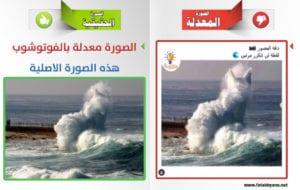 مقارنة الصورة الأصلية والمفبركة موجة في شكل قط