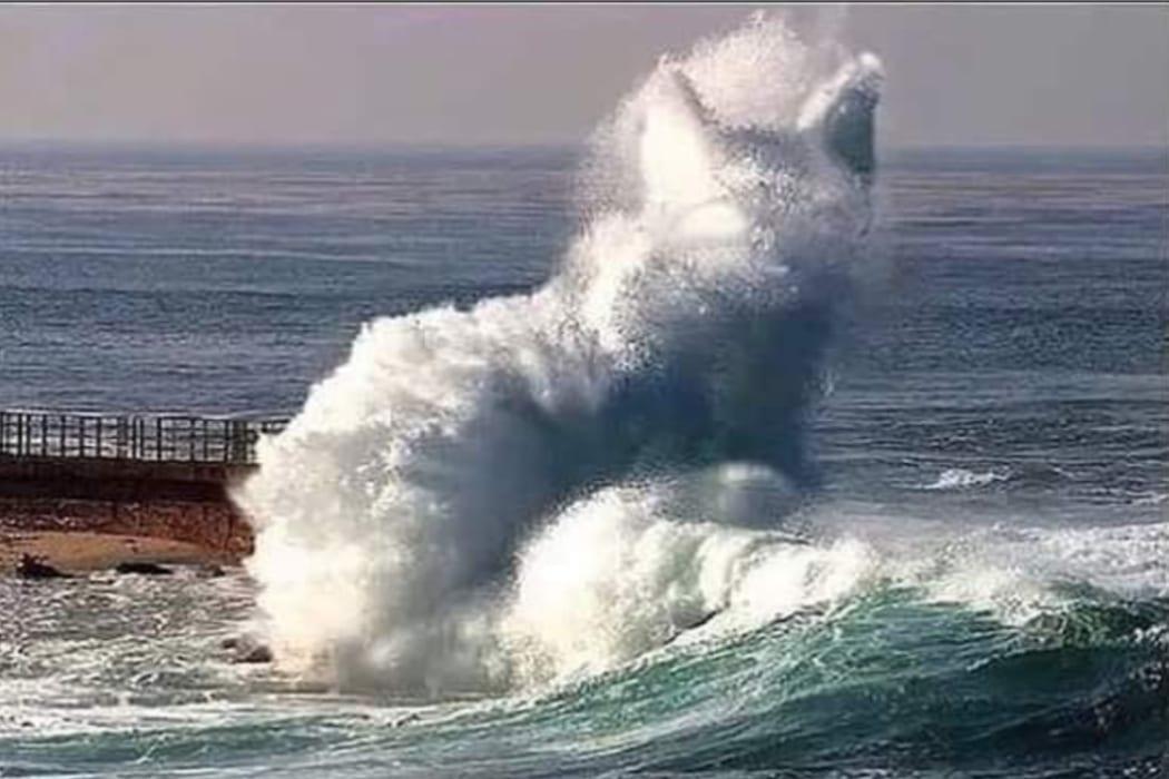 موجة في البحر على شكل قطة صورة مفبركة