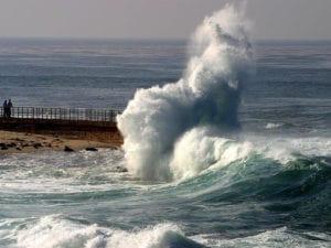 موجة في البحر على شكل قطة صورة أصلية