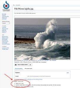 wave la jolla موجة في البحر على شكل قطة