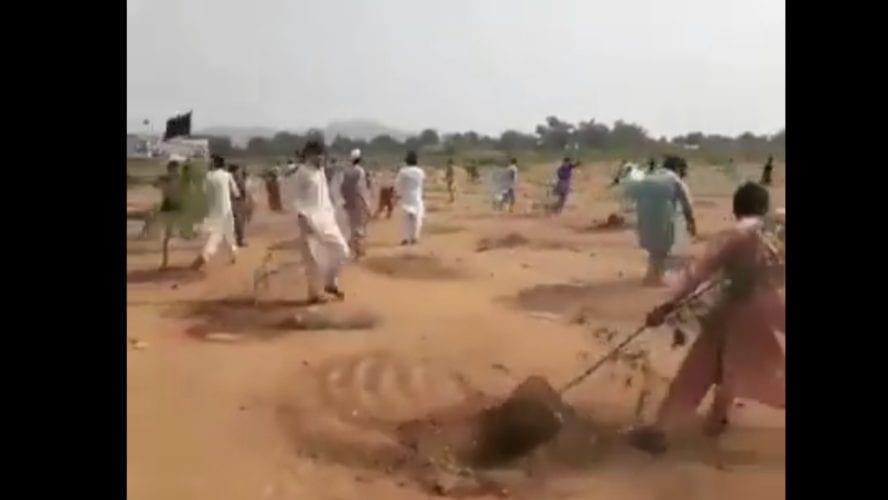 سكان باكستان لم يقتلعوا الأشجار بسبب فتوى إسلامية