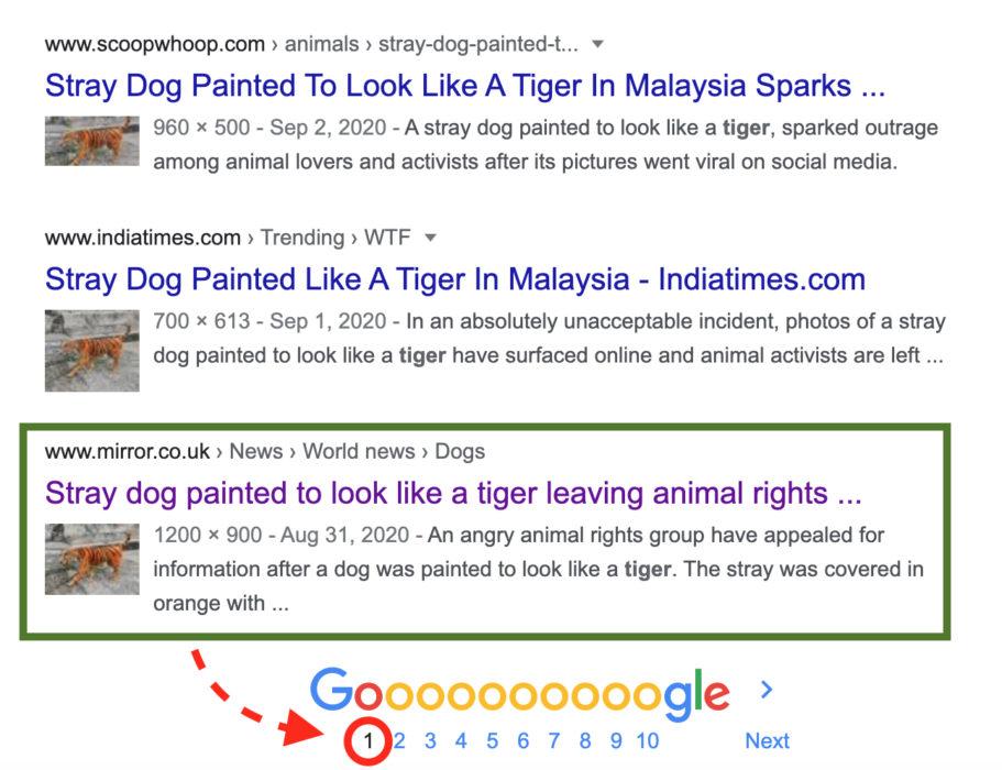 مقال جريدة Mirror حول صور كلب بألوان نمر