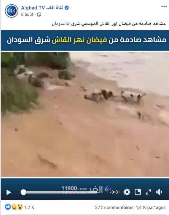 انجراف ماشية بسبب فيضانات في المكسيك وليس السودان