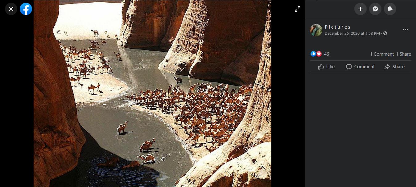صور من واحة آرشي في تشاد وليست من محمية وادي الجمال في مصر.
