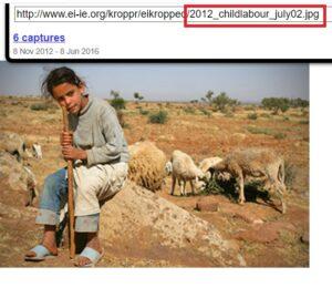 صورة طفلة ترعى الغنم ليست نجاة بلقاسم