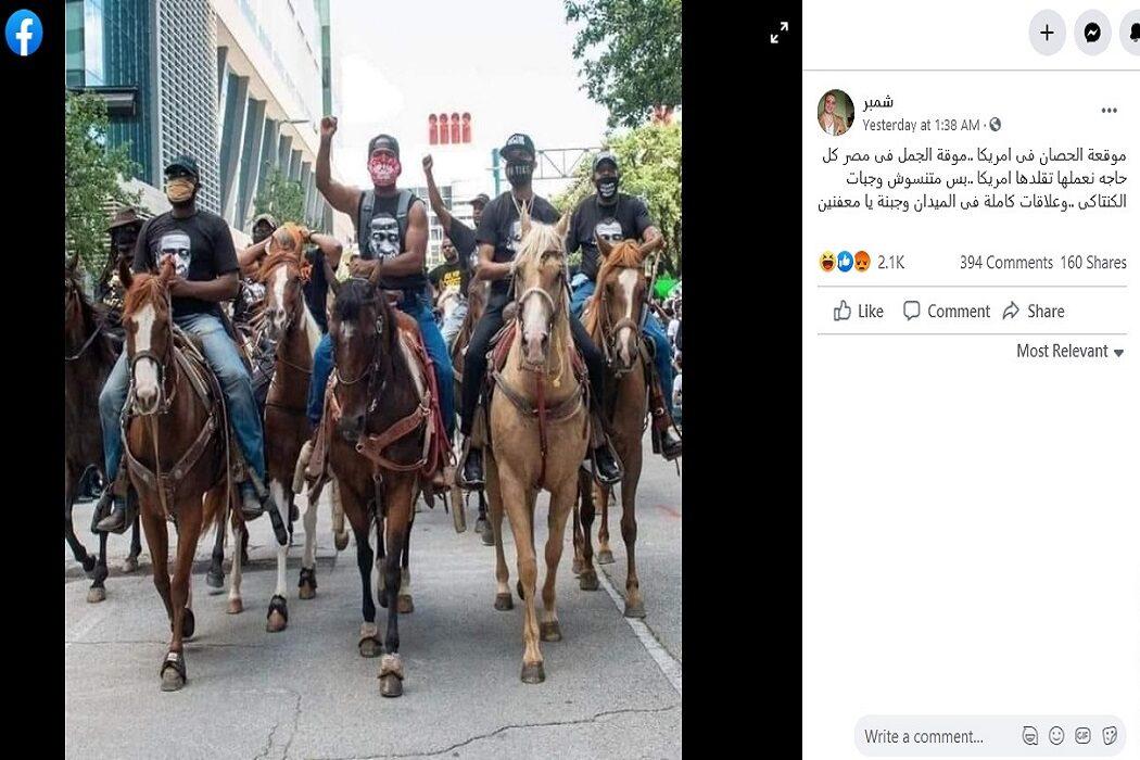 مصدر ادعاء مظاهرة موقعة الجمل - الحصان في أمريكا فتبينوا