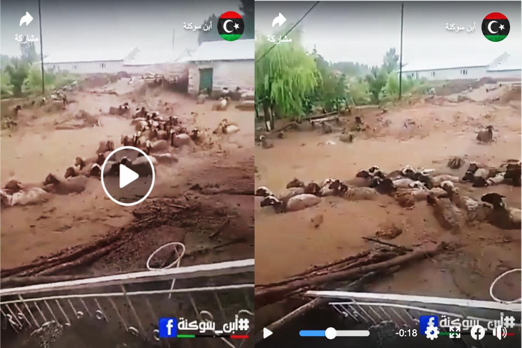 ادعاء فيضانات في تركيا وليس المغرب