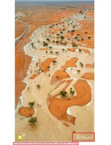 فيضانات السعودية شعيب بقر فتبينوا
