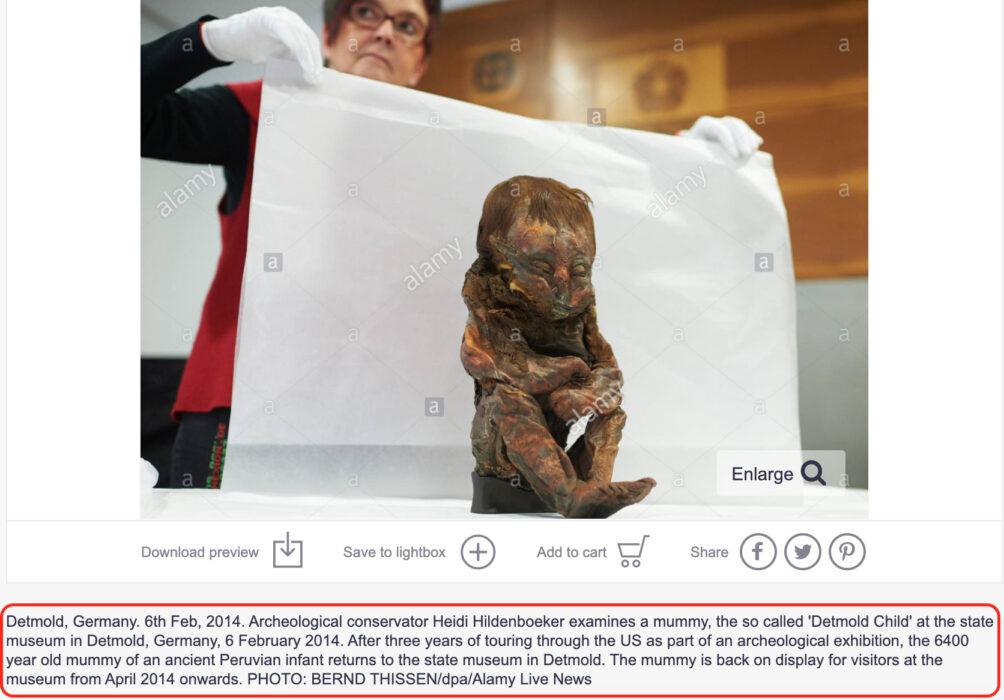 """مومياء """" ديتمولد """" اكتشفت فعلا في بيرو وتعود لطفل لم يتجاوز عمره 10 أشهر"""