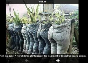 ادعاء زراعة ملابس المتوفين