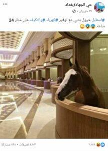 اسطبل خيول في دبي