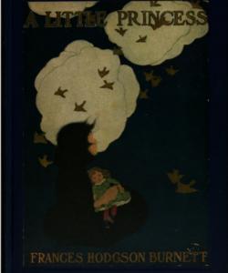 غلاف رواية سالي كرو وهي غير حقيقية