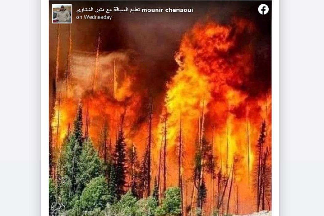 هذه الصورة لا تعود إلى حرائق الجزائر الأخيرة فتبينوا