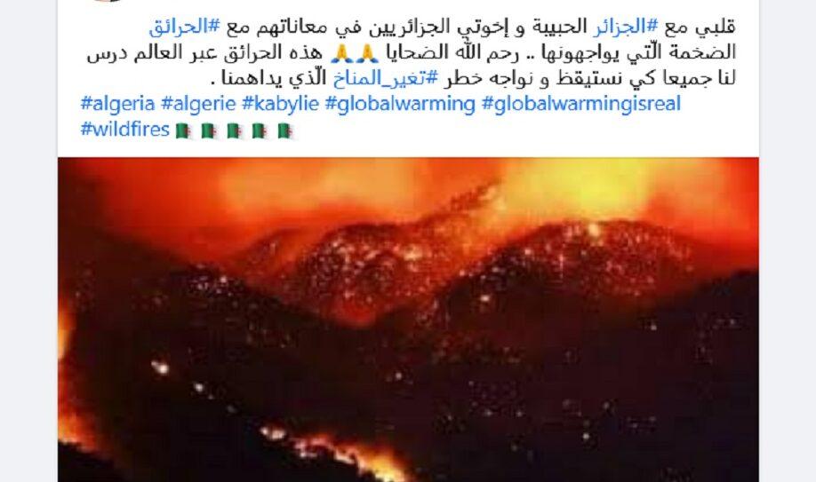 ادعاء حرائق الجزائر مضلل الصورة من تركيا فتبينوا