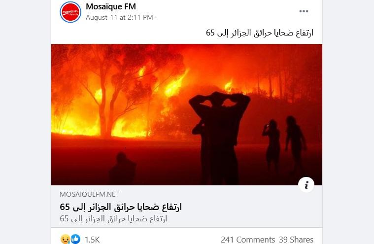 مصدر ادعاء حرائق الجزائر مضلل الحقيقة أن الصورة من جنوب أفريقيا فتبينوا