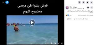 مصدر ادعاء سمكة قرش على شواطئ مرسى مطروح